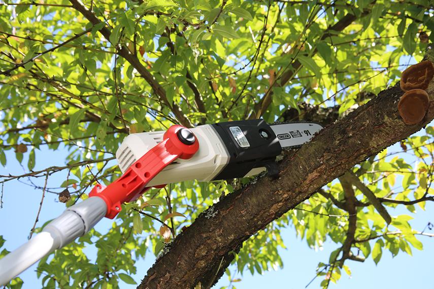 Entaster für Obstbaumschnitt ITHK 800