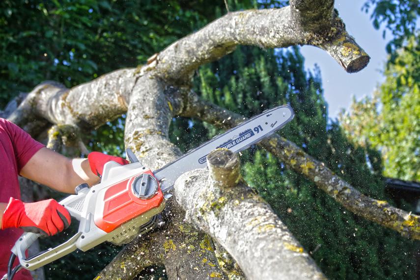 Holz mit Elektro Kettensägen von IKRA schneiden