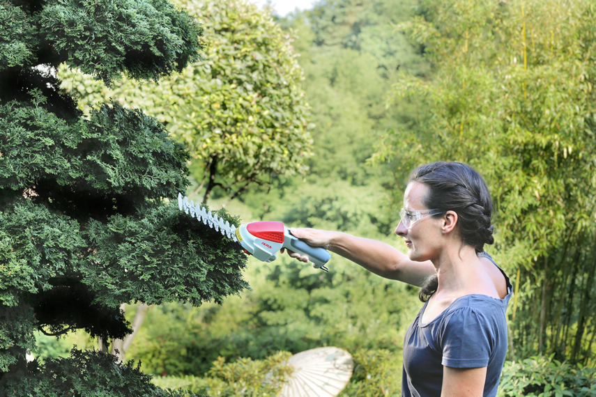 Shrub shear