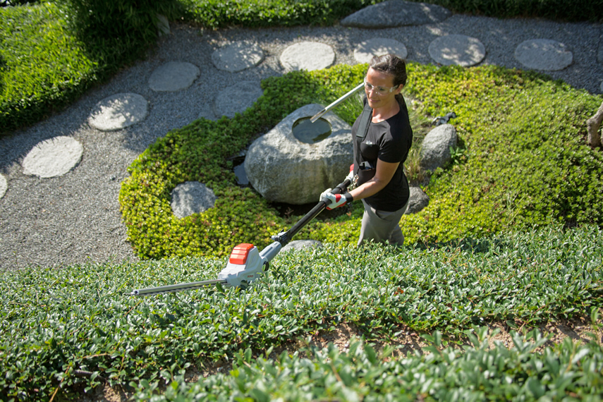 Trimming a hedge with an telescopic hedge trimmer