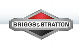 lawn mowers with Briggs & Stratton engine