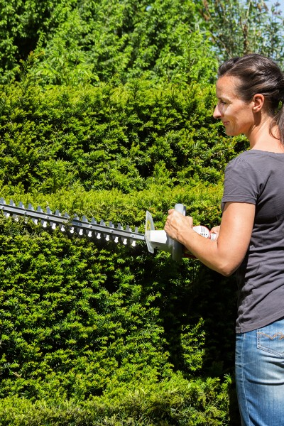 Cordless Hedge Trimmer IAHS 20-1