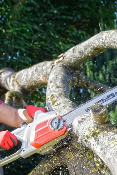 Electric Chainsaw IECS 2240 TF