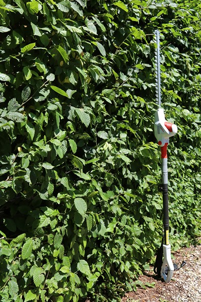 Electric Telescopic Hedge Trimmer ITHS 600